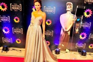 premios-martin-fierro-2015-2052294w618
